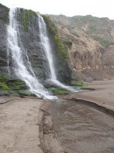 Palomarin Trailhead to Alamere Falls, Point Reyes, CA