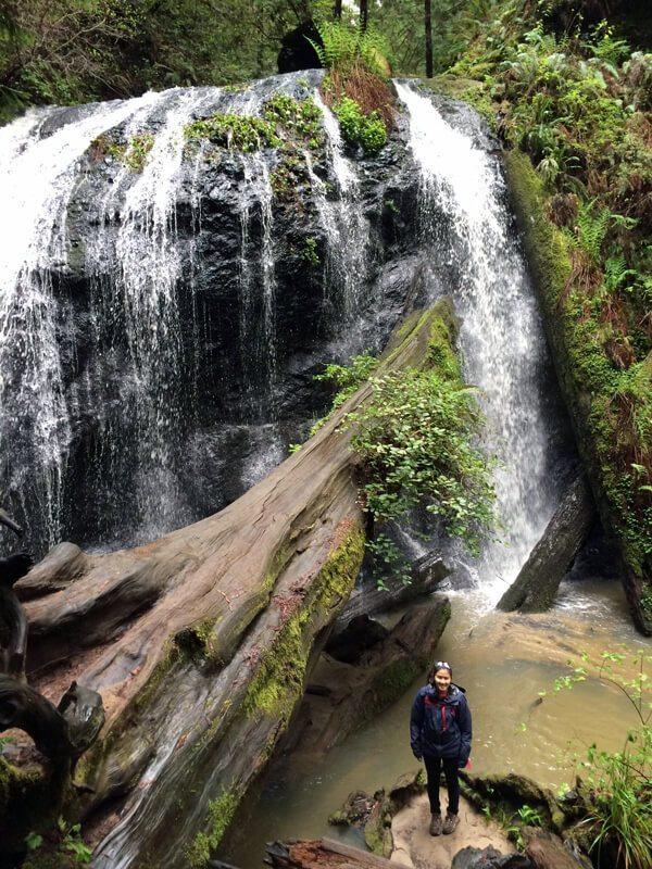 Russian Gulch State Park: Fern Canyon