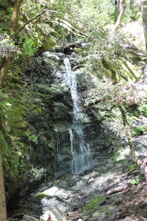Uvas Canyon County Park: Alec Canyon & Waterfall Loop ...