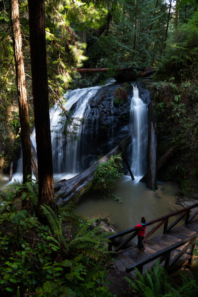 Hiking Russian Gulch State Park, Fern Canyon Waterfall Loop