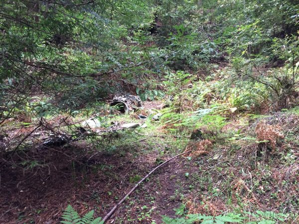 El Corte Madera Open Space Preserve: Resolution Trail and Plane Crashes