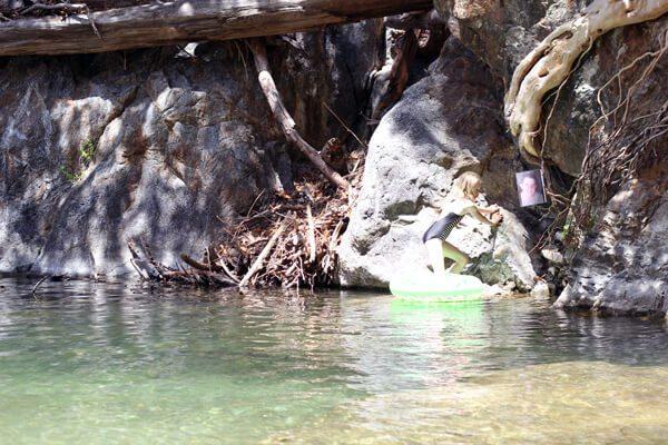 Pfeiffer Big Sur State Park: Big Sur River Gorge July 2014