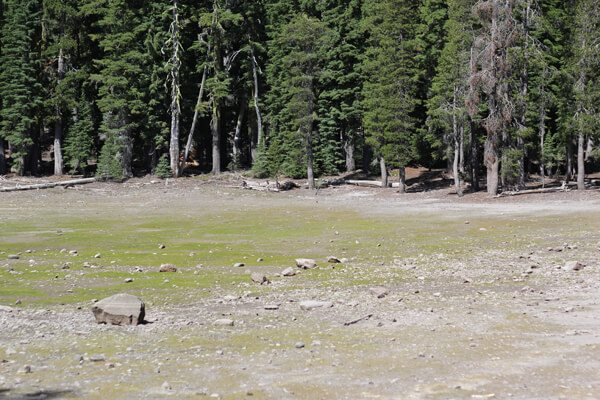 Lassen Volcanic NP: Kings Creek Falls, Bench Lake & Sifford Lake