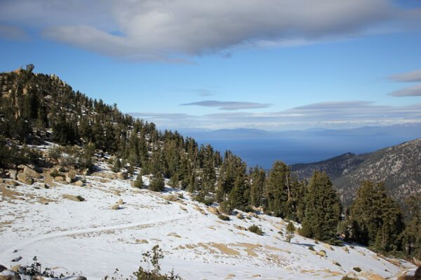 Lake Tahoe Basin: Freel Peak via Trout Creek
