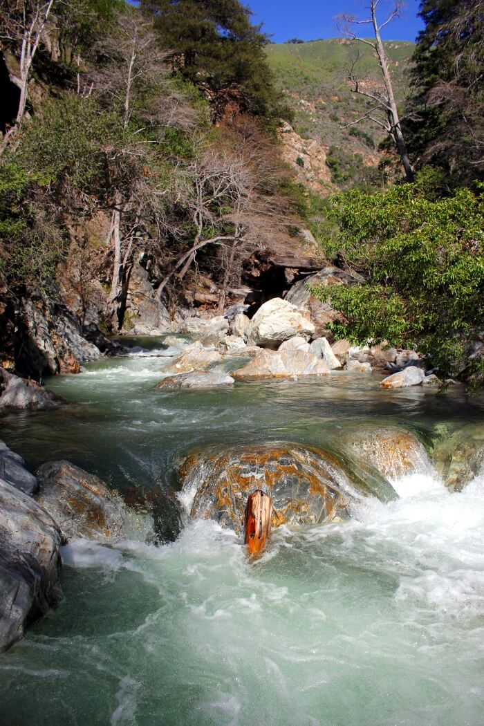 Pfeiffer Big Sur State Park: Big Sur River & Pfeiffer Falls Trip Report February 2015