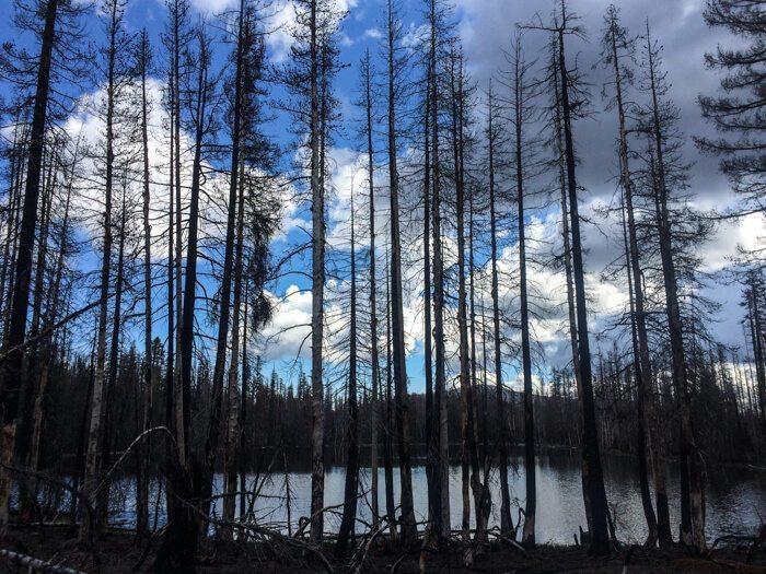 Three Day Backpacking Lassen Clusters Lake Loop