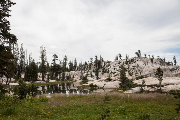 Backpacking Emigrant Wilderness Granite Lake