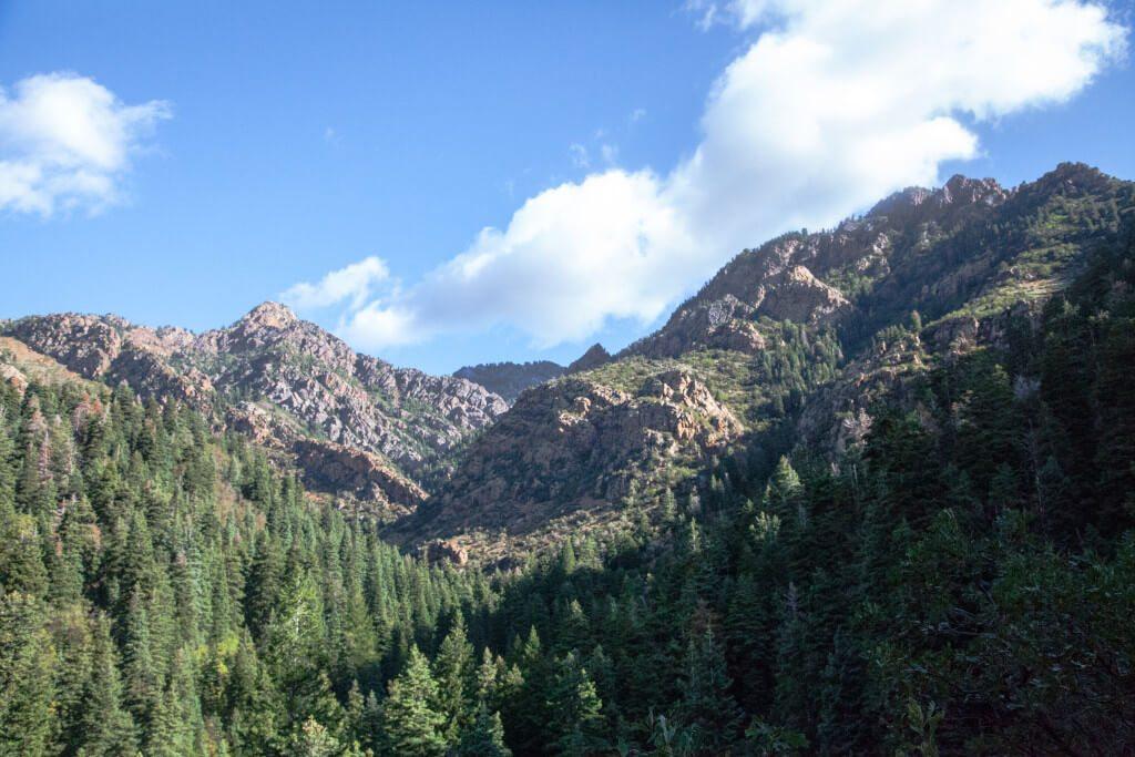 Summer #ORShow #hikerchat Hike Mill D Trail Hidden Falls