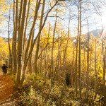 Big Cottonwood Canyon Silver Lake Fall Trip Report