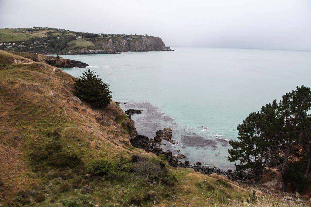 Hiking Godley-Head Taylors Mistake