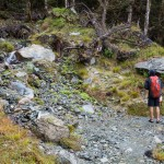 Day 3 Routeburn Track Lake Mackenzie to Divide Shelter