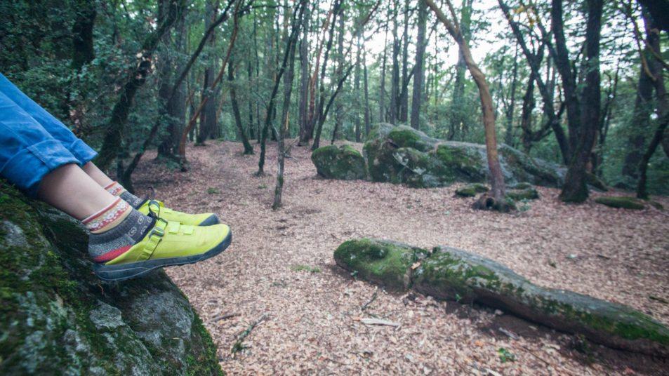 Arc'teryx Arakys Approach Shoe Review