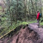 Hiking Purisima Creek Redwoods February 2017