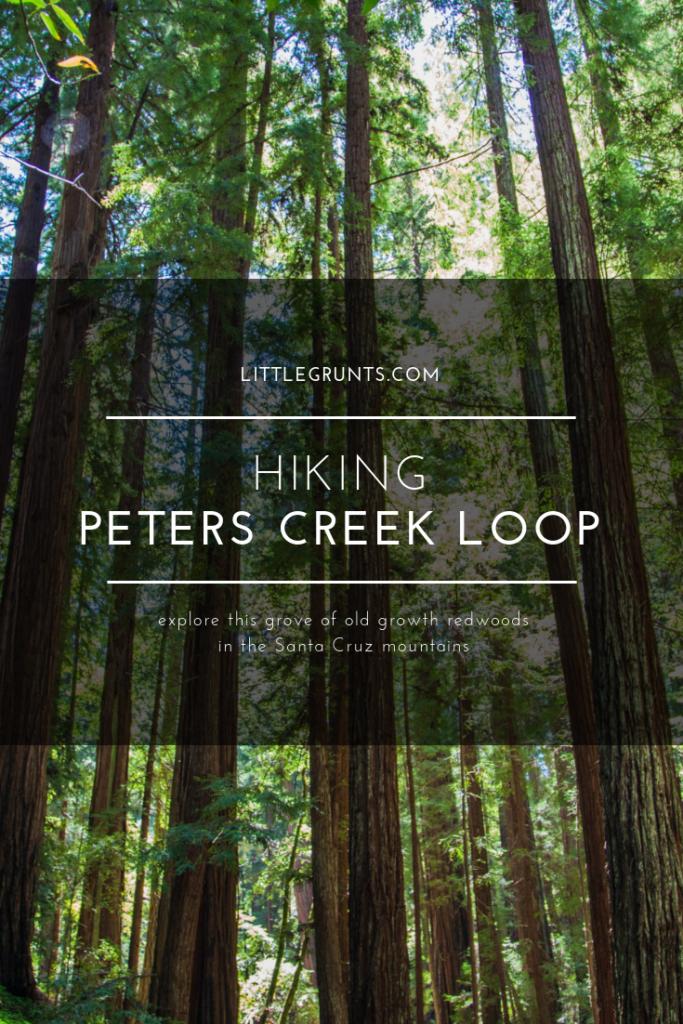 Hiking Peters Creek Loop