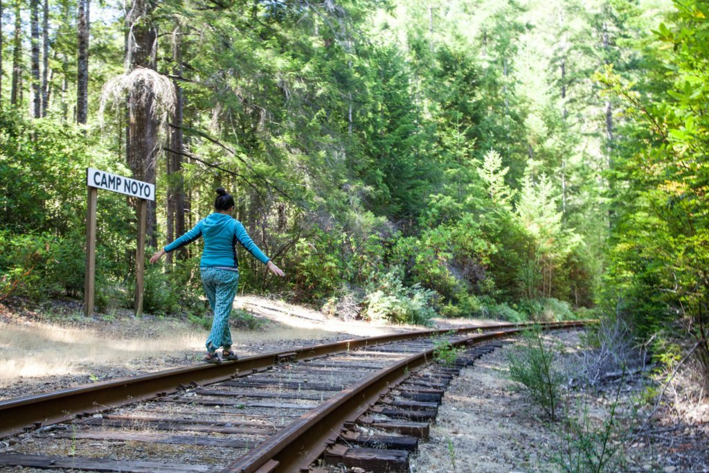 Mendocino Camping Camp Noyo Skunk Train