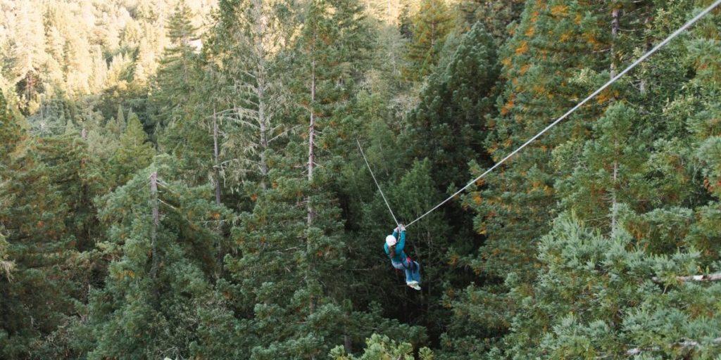Sonoma Canopy Tours Ziplining Bay Area Experiences