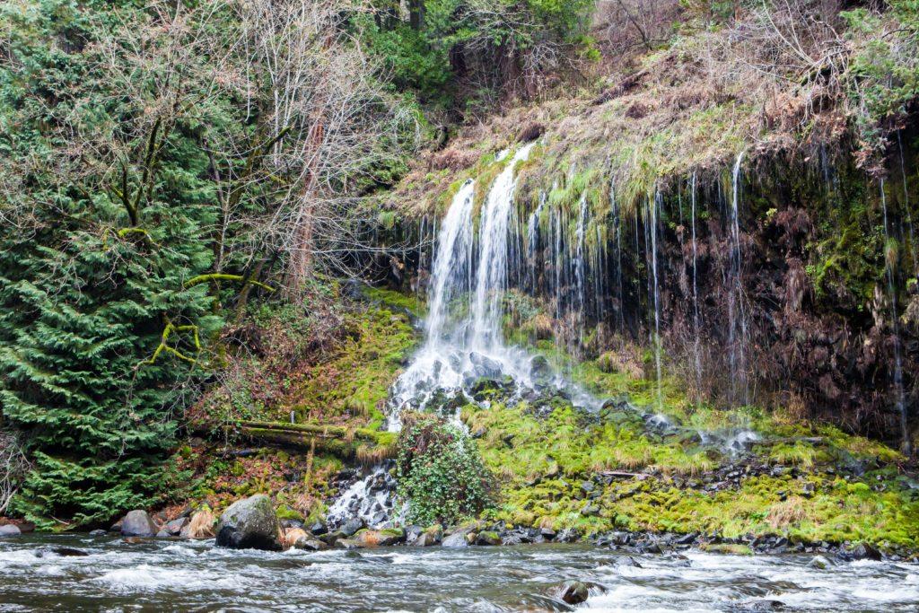 Hiking Mossbrae Falls