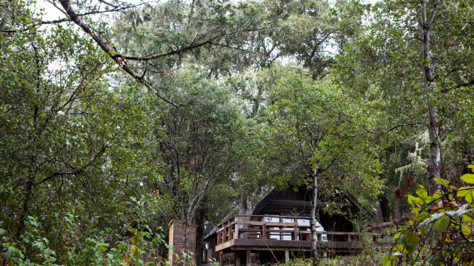Sam McDonald Sierra Club Hikers Hut