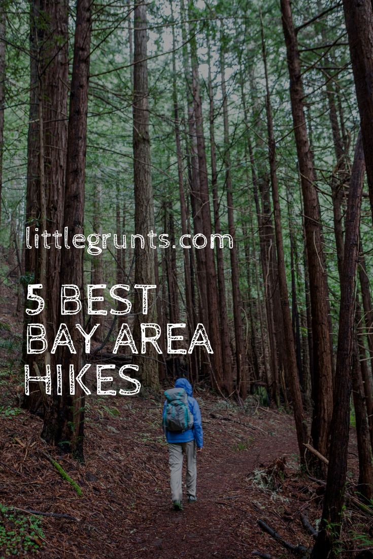 Favorite Best Bay Area Hikes