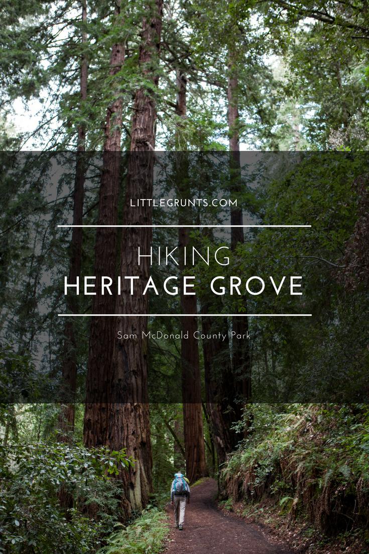Hiking Heritage Grove Sam McDonald County Park