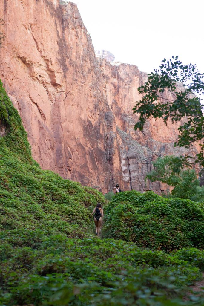 Hiking Havasupai